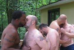  Camp Bear Orgy Pics 